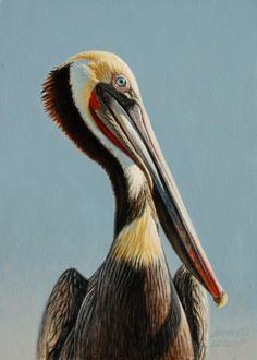Brown Pelican 7x5, painting by artist George Lockwood