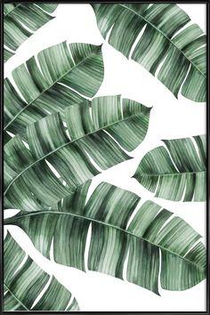Tropical No 8 Als Poster In Kunststof Lijst Door Typealive