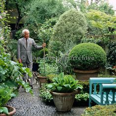 Although John Stefanidis is an interior designer he has created several wonderful gardens.  Here  he is in his London garden.