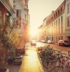 Viennese morning Explore, Photography, Photograph, Fotografie, Fotografia, Exploring, Photoshoot