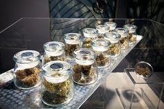 Trump's Veterans Affairs Pick Open To Medical Marijuana