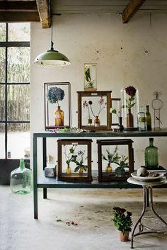 Jeroen van der Spek:::Flowers | stillstars.com