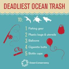 A scientific study of the impacts that 20 different kinds of trash have on marine life has been published.