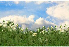 Cindy Bennett, When Roses Fly on OneKingsLane.com