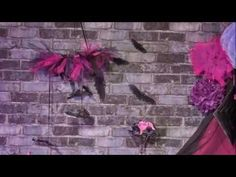 Décoration Halloween Chica Vampiro - noir et violet - YouTube