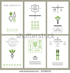 Collection of cards with Vegetables. Icons. Vector. Isolated - stock vector