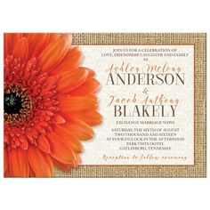 Orange gerbera daisy rustic country wedding invitation with burlap and lace accents. Bright and cheerful. Works for summer or fall / autumn wedding.