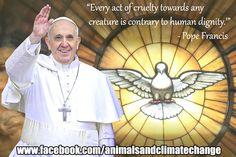 #climatechange #PopeFrancis #govegan #animalfarmingclimatechange