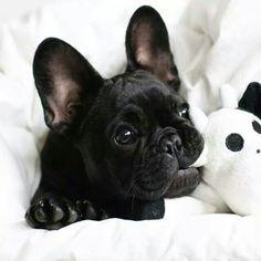 So cute... ...