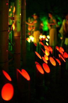 なら燈火会 Bamboo lights