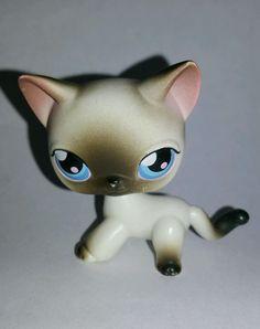Littlest Pet Shop Black White Siamese Cat Blue Eyes #5 Preowned LPS in Toys & Hobbies, Preschool Toys & Pretend Play, Littlest Pet Shop   eBay
