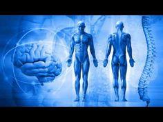 истории Истории : Биофизика в медицине (рассказывает профессор Евген...