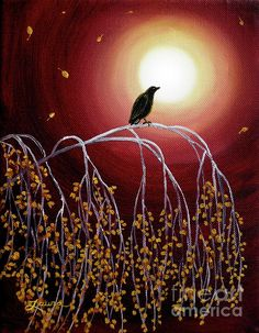 Black Crow On White Birch Branches BranchesCrows