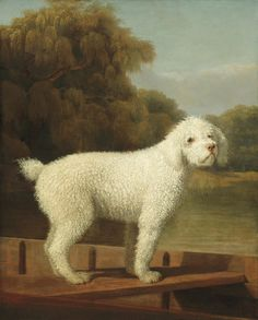 "design-is-fine: "" George Stubbs, White Poodle in a Punt, Oil on canvas. National Gallery of Art, Washington, USA. Via artsy "" Henri Rousseau, Oil On Canvas, Canvas Art, Canvas Prints, Canvas Size, Dog Paintings, Painting Prints, National Gallery Of Art, Art Gallery"