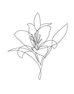 Flower Line art tattoo - Line Art Flowers, Flower Line Drawings, Line Flower, Flower Art, Simple Line Drawings, Drawing Flowers, Diy Flowers, Kunst Tattoos, Bild Tattoos
