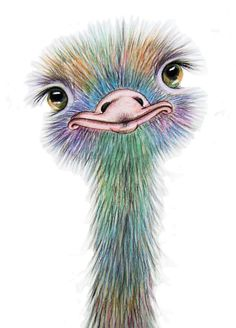 OSTRICH Art Signed Print from an original watercolour painting by artist Maria Moss. Available in 4 sizes - Animal Paintings, Animal Drawings, Art Drawings, Bird Paintings, Posters Vintage, Art Et Illustration, Inspiration Art, Art Original, Bird Art