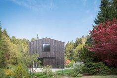 Ein Haus mitten im Wald: aus einem alten Stall wurde dieses Passivhaus mit begrüntem Satteldach | Stocker Dewes Architekten BDA ©Yohan Zerdoun Architectural Photography, Freiburg