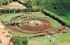 Mandala avec de leau au centre