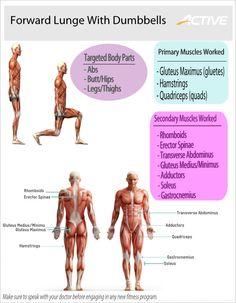 how to make leg forward muscles work