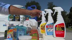 The best boat cleaning products on the market.