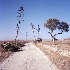 Cabo de Gata-Níjar, Almeria