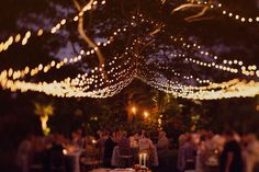 canopy of lights | Our Labor of Love