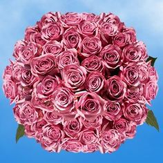 150 Fresh Cut Lavender Roses Long Stem | Cool Water Roses | Fresh Flowers Wholesale Express Delivery | Perfect for Birthdays, Anniversary or any occasion. *** For more information, visit image link.