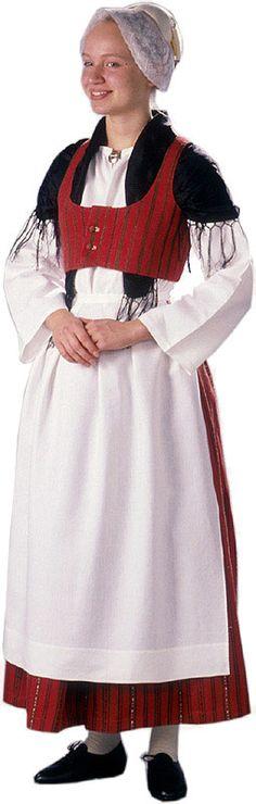 Finland. Jokiläänin (Jokioisten) naisen kansallispuku. Lots of very good pictures of Finnish national costumes. Kuva © Suomen kansallispukuneuvosto, Timo Ripatti 1991. http://www.kansallispuvut.fi/puvut/jokilaani_np.htm