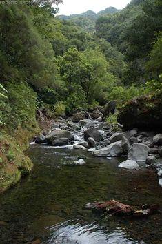 Ribeira do Seixal, Chão da Ribeira, Madeira Island