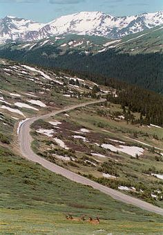 Trail Ridge Road, Rocky Mountain National Park  The highest continuous paved road in the world
