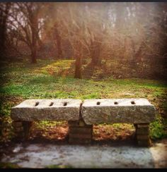 #park #calm #sun