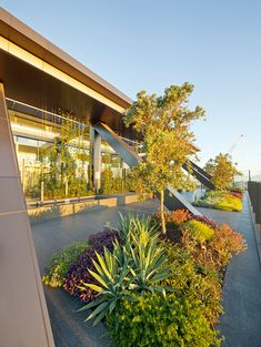 06-OneCentralPark_ASPECTOCULUS_SWP « Landscape Architecture Works | Landezine