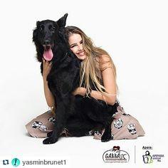 G.A.R.R.A. - Grupo de Ação, Resgate e Reabilitação Animal: Yasmin Brunet, também agarrou essa causa! #amigoag...