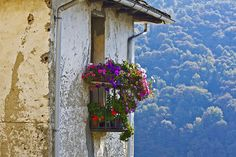 Balcone fiorito | Aurano (VB) italia