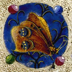 Taddeo Crivelli - Butterfly from the Bible of Borso d'Este - 1455 Medieval Life, Medieval Art, Renaissance Art, Illuminated Letters, Illuminated Manuscript, Book Of Hours, Medieval Manuscript, Painting Edges, Botanical Art