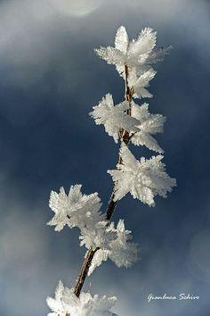 Die 335 Besten Bilder Von Winterzauber Beautiful Places Nature