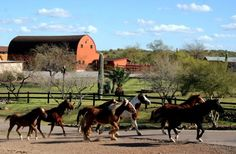 Flying E Dude Ranch, a Wickenburg, AZ Dude Ranch inspected and approved by the Dude Ranchers' Association