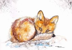 Original Watercolour Painting by Be Coventry,Realism,Shy Fox