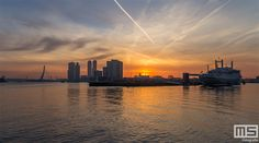 Skyline, Rotterdam