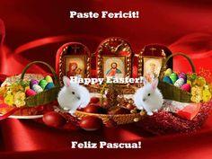 Paste Fericit!1c Trending Memes, Past, Funny Jokes, Entertaining, Christmas Ornaments, Holiday Decor, Inspiration, Happy, Happy Easter