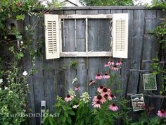 An old window frame with some junk shutters to create a focal point in the garden