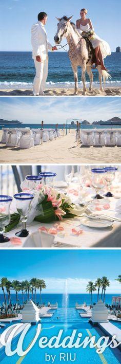 Have a horse walk you down the aisle - Wedding Los Cabos, Mexico - Beach Wedding - Wedding Destination - RIU Weddings