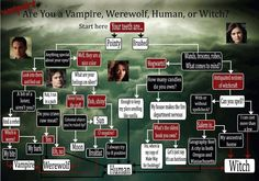 The vampire diaries | γενική ενημέρωση (Δ.Δ.) | Σελίδα 2