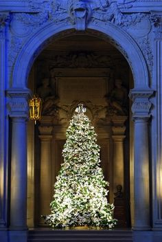 Wish-Filled Origami Cranes Adorn Christmas Tree:San Francisco City Hall