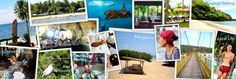 Nusa Islands: Neighbor Sea Lover's Paradise  A short escape to one of the neighbor paradisiacal islands of Bali will enhance your tropical experience.  nusa lembongan penida ceningan manta ray seaweed essential retreat organizer mangrove diving yoga snorkeling bird sanctuary cave meditation