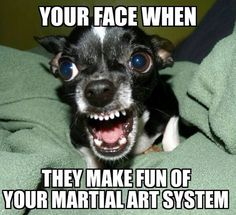 Black belt jokes. Martial arts and mma humor. Fight training funnies and combat sports comedy. Sport karate memes