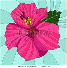 Hibiscus Flowers / Stained glass window - stock vector