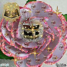 Islamic Wallpaper Hd, My Name Wallpaper, Alphabet Wallpaper, Allah Wallpaper, Glittery Wallpaper, Floral Wallpaper Iphone, Galaxy Phone Wallpaper, Wallpaper Nature Flowers, Rose Flower Wallpaper