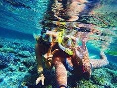 Fiji Snorkelling - Perfect!!