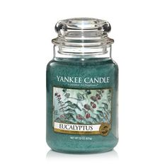 Eucalyptus - Candles - Yankee Candle --- online shop
